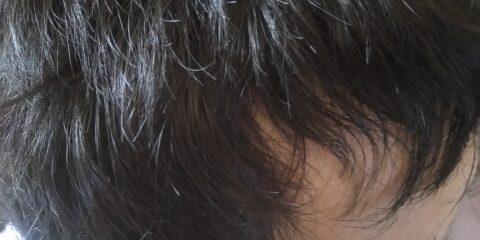 禿際ネイチャー